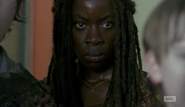 Michonne and the herd