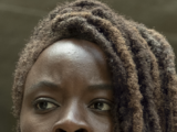 Michonne (TV Series)