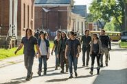 Normal TWD 709 GP 0817 0006-RT-min