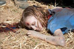 The-Walking-Dead-Season-2-Episode-8-Photos-4