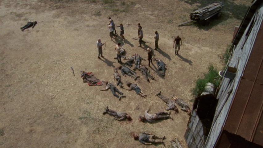 Lacey Tv Series Walking Dead Wiki Fandom Powered By Wikia