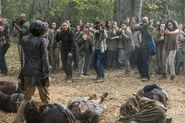STN the groups killing off walkers