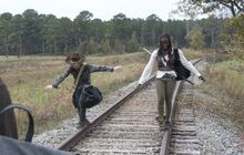 TWD Carl & Michonne