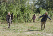 AMC 514 Walkers Loom Out
