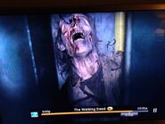 Chris Harrelson Zombie Slabtown