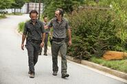Normal TWD 709 GP 0825 0014-RT