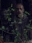Whisperer75 (Guardians)