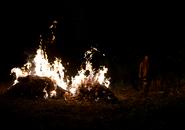AMC 604 Morgan Burning Bodies