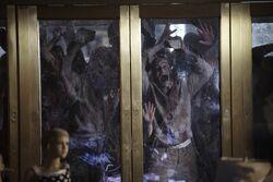 Zombies attack door