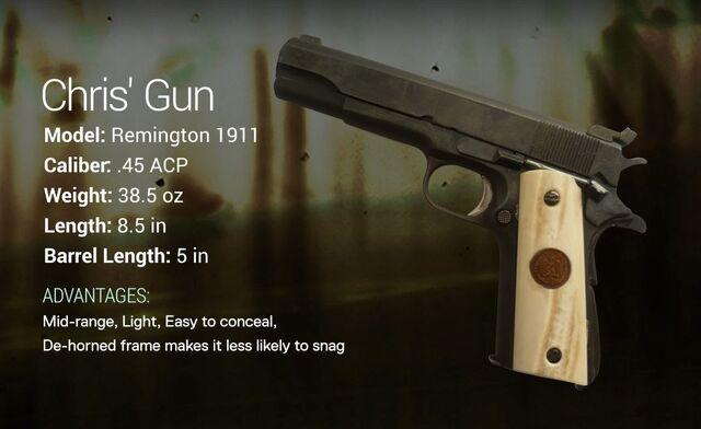 File:Chris' Gun.jpg