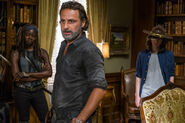 Normal TWD 709 GP 0816 0083-RT