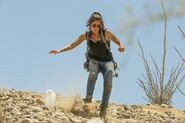 Normal FTWD 214 PI 0609 0127-RT