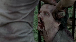 A zombified David being stabbed in the head by Glenn Rhee