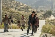 Normal FTWD 214 PI 0608 0433-RT-GN