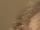 Bob Miller (TV Series)