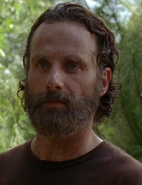 WHW Rick Clearing