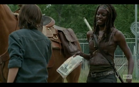 Michonne Gives Carl comics
