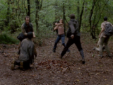 Tyreese Williams' Group/Gallery