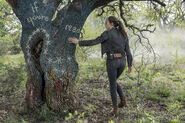 5x09 Alicia discovers messages on a tree