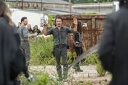 Normal TWD 709 GP 0818 0062-RT-min