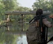 Yellowjacketcreekanddaryl