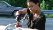 Sasha Williams Explosives 709 Rock In The Road