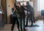 AMC FTWD Children of Wrath