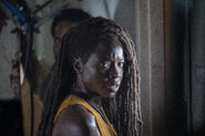 10x13 michonne and virgil