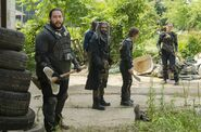 Normal TWD 703 GP 0525 0252-RT