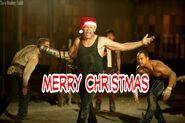 Christmas Merle