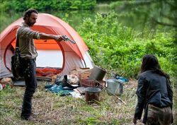 Clara's Camp