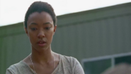 Sasha Williams Speaking 7x12