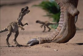 Big Al et petits Allosaurus