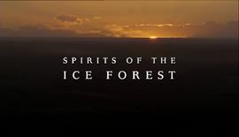 SpiritsOfTheIceForest