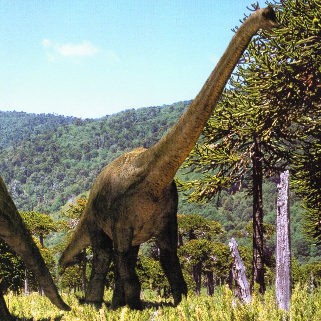 brachiosaurus walking with wikis fandom powered by wikia