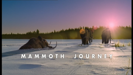 Mammoth Journey Title