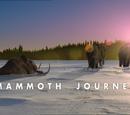 Mammoth Journey