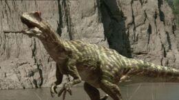 WWM1x3 Allosaurus