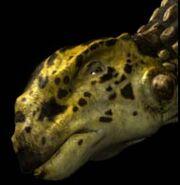 Ankylosaurus p2
