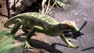 PetrolacosaurusMain