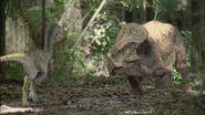 TGC Velociraptor 21