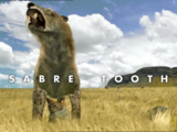Sabre Tooth
