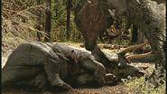 WWD Triceratops