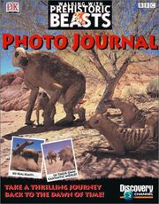 WWB USA Photo Journal