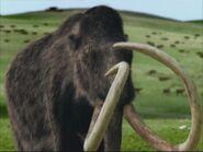 WWB1x6 Mammoth
