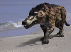 Andrewsarchus2