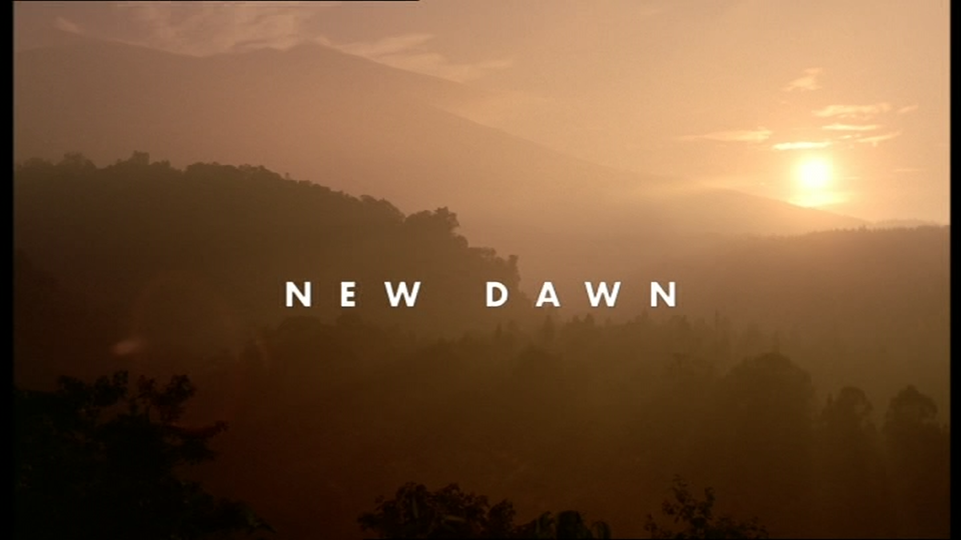 New Dawn Title.png