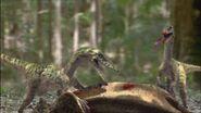 TGC VelociraptorPairFeeding