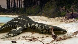 Liopleurodon beached WWDE03