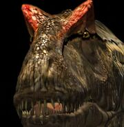 Allosaurus p3